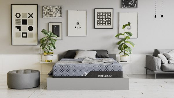 Intellibed Signature Matrix Mattress